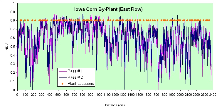 by-plant variability in corn, Ames, IA