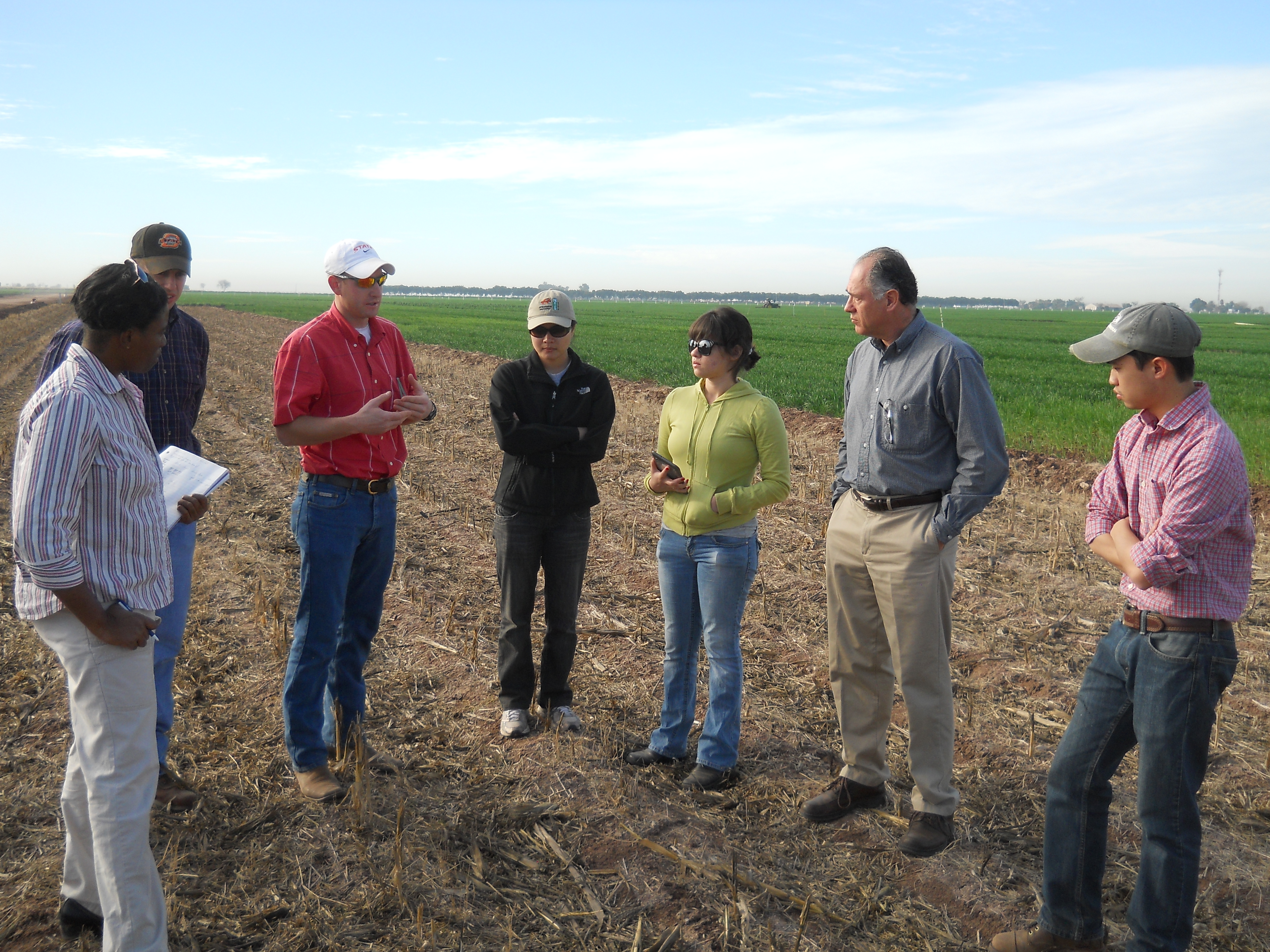 Oklahoma state university students help cimmyt researchers in obregon