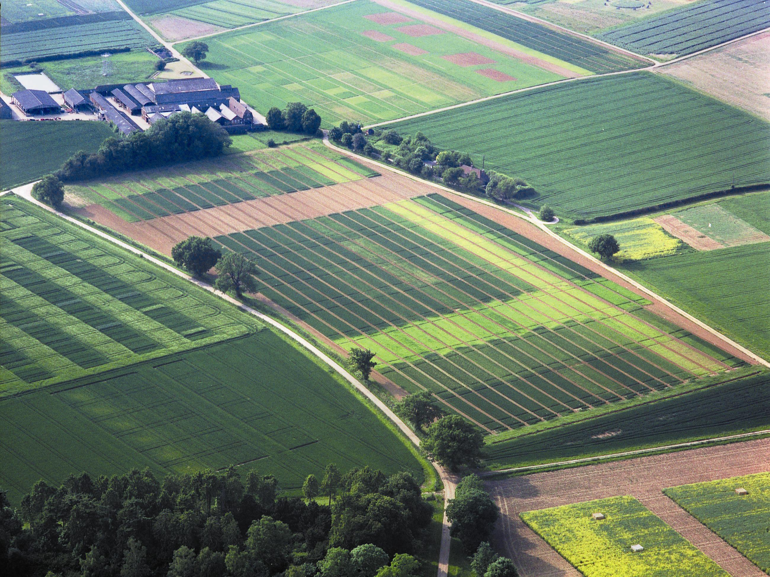 Земля под строительство в сша купить