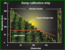 Configuration of the RAMP or Ramp Calibration Strips for Improved N Management in corn and wheat